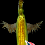 winged_gilled_corn_monster_01